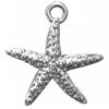 Charm plata estrella de mar